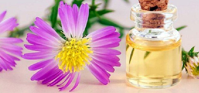 Essential oil bottle with purple flower and plant
